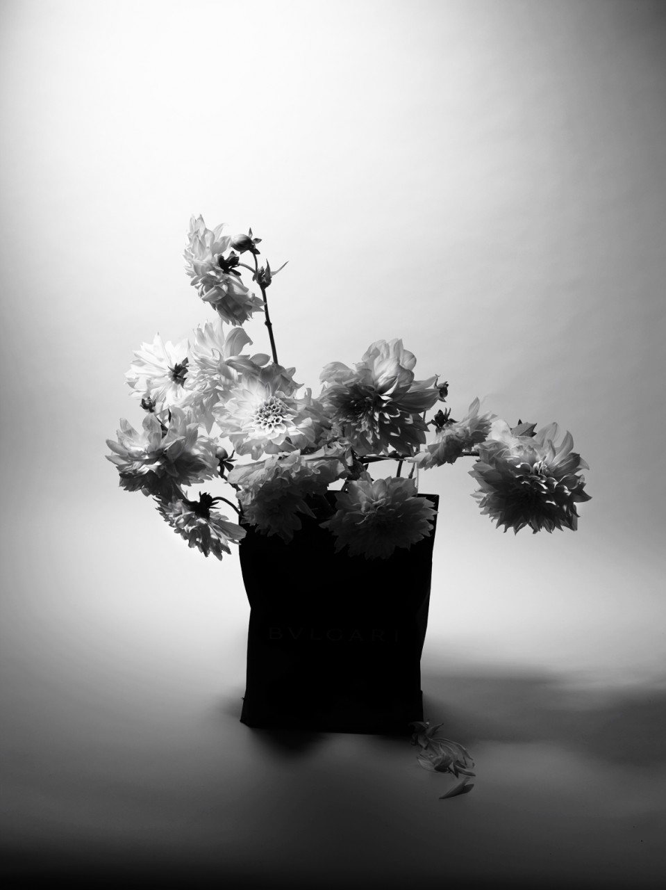 bouquetn&b