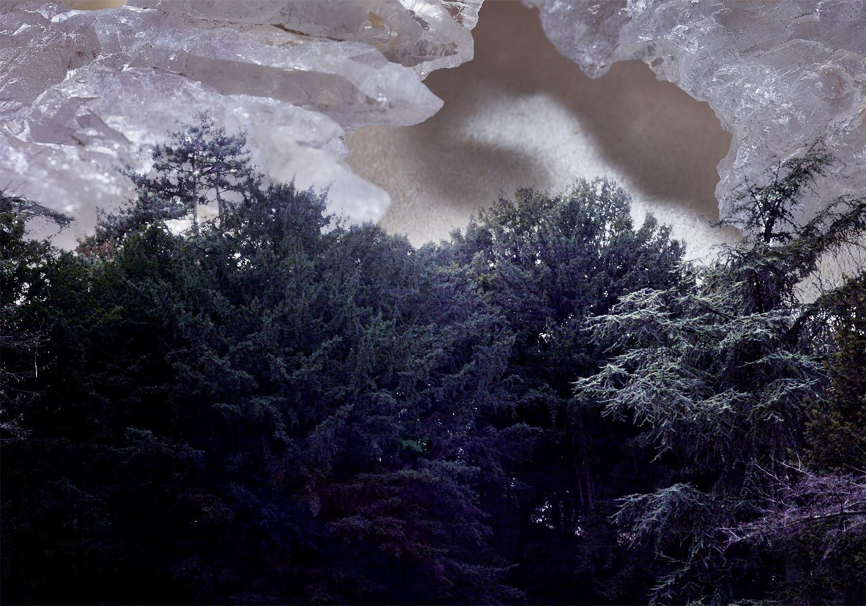 Landscape1bisbis