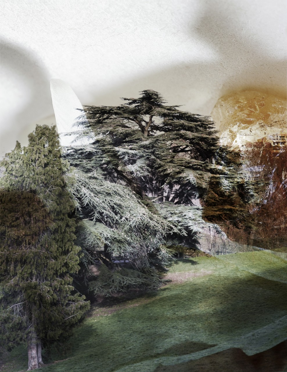 landscape3bisbis