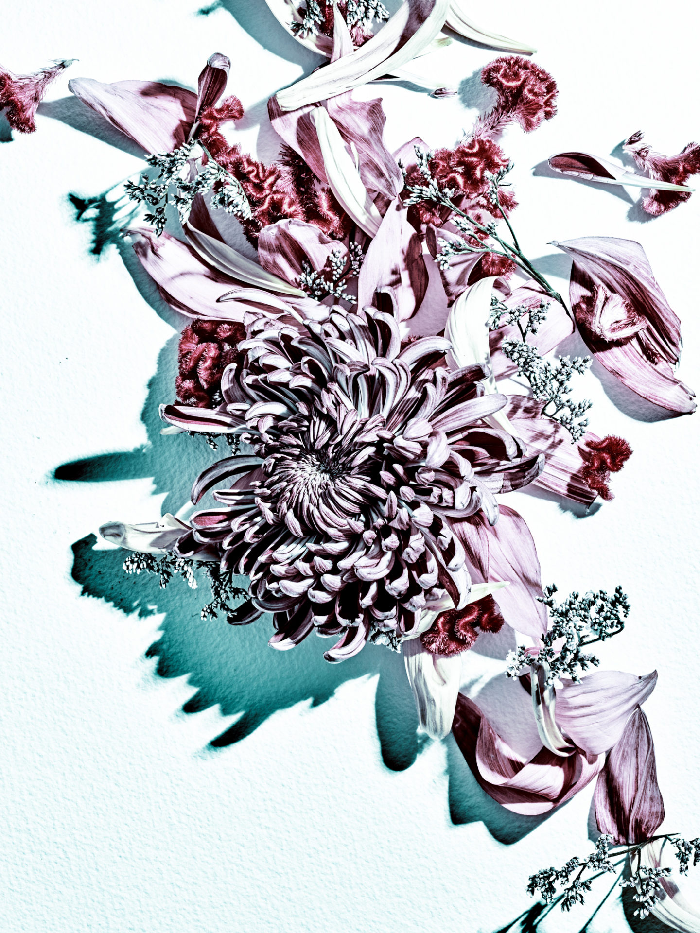 PAPER Flowers 03
