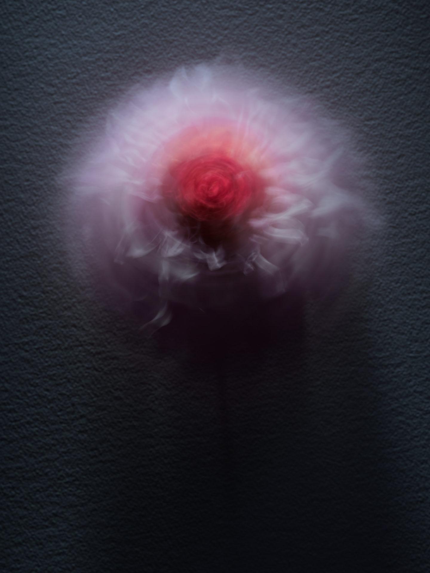 PINK FLOWER 02_1