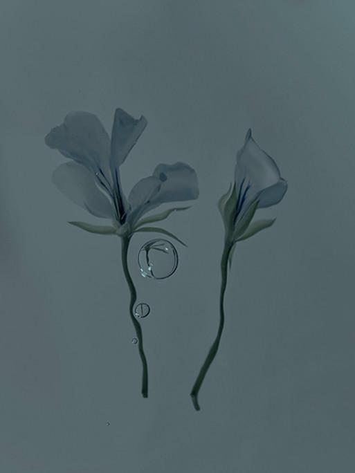 candice-milon-12
